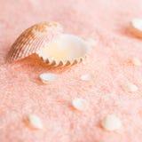 Badekurortkonzept mit Muscheln und Perle auf empfindlicher Terry-Beschaffenheit Stockfotografie