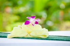 Badekurortnachrichten Stockbilder