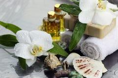 Badekurortorchideen-Grüntuch Lizenzfreies Stockbild