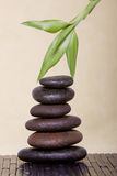 Badekurortsteine mit Bambus Stockbild