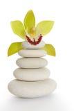 Badekurortsteine und -orchidee Stockbilder