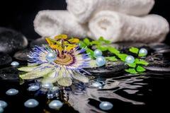 Badekurortstillleben der Passionsblumenblume, Niederlassungen, stapelte Tücher, z Lizenzfreie Stockfotos