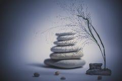 Badekurortstillleben mit gestapelt vom Stein mit einer schönen Niederlassung stockbilder