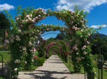 _Baden Baden, Germania di Rose Garden Fotografie Stock Libere da Diritti