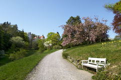 Baden. Path in the park. Baden in Austria. Europe Royalty Free Stock Photography