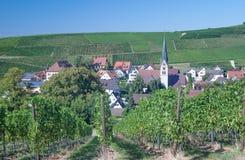Baden Wine Route, forêt noire, Allemagne Images stock