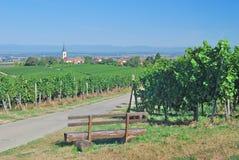 Baden Wine Route, Markgraeflerland, foresta nera Fotografia Stock