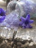 Badend zout royalty-vrije stock fotografie