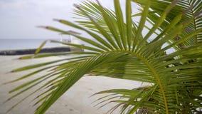 Badeort, Bungalow auf Wasser in unfocused Ansicht von hinten Palmblatt auf Ozean stock video footage