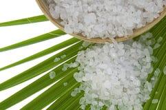 Badesalz und Palmblatt Stockbild