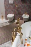 badet dekorerar interioren Royaltyfri Bild