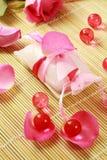 badet pryder med pärlor tvålwellness Fotografering för Bildbyråer