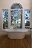 Badewanne mit einer Ansicht Stockbild