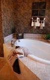 Badezimmer im neuen vorbildlichen Haus Lizenzfreie Stockfotos