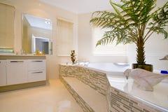 Badezimmer mit Ente Stockfotografie