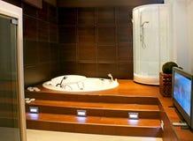 Badezimmer mit Fernsehapparat Lizenzfreies Stockbild