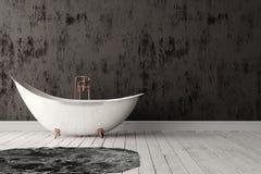 Badezimmer mit Teppich, Bretterboden und rauer Wand Stockfoto