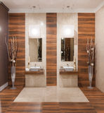 Badezimmerdesign Stockbild