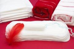 Badfrotteestoffe, rote Feder auf Monatsfrauenauflage und Tampon Medizinisches Konzeptfoto Blutzeitraum Menstruation gesundheitlic Stockfotos