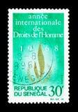 Badge, año internacional de serie de los derechos humanos, circa 1968 Foto de archivo