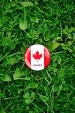 badge avec la feuille d'érable canadienne blanche rouge de drapeau se situant dans l'herbe sur le fond vert de nature de forêt de Images stock