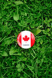 badge with red white canadian flag maple leaf lying in grass on green forest nature background outside, Canada day Stock Images
