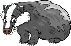 Badger animal cartoon illustration Royalty Free Stock Image