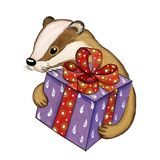 Badger gives gift in a beautiful box, watercolor illustration royalty free stock photo