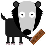 Badger loves chocolates Stock Image