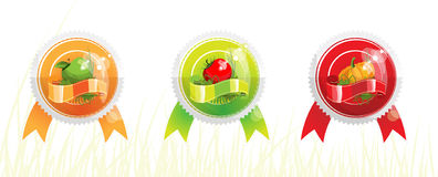 Badges with vegetables A Stock Photography