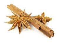 Badian and cinnamon Royalty Free Stock Photos