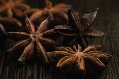 Badian close up. Brown badian close up on dark background stock image