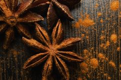 Badian close up. Brown badian close up on dark background stock photo