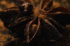 Badian close up. Brown badian close up on dark background royalty free stock images