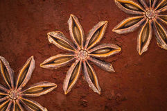 Badian. Spices on rough texture stock photography
