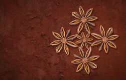 Badian. Spices on rough texture royalty free stock photography
