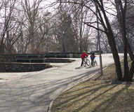 Badine des garçons marchant avec un vélo en parc Images stock