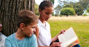 Badine des livres de lecture en parc clips vidéos