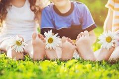Badine des pieds avec la fleur de marguerite sur l'herbe verte en parc d'été Image libre de droits