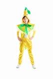 Badine le costume de carnaval photo libre de droits