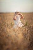 Badinez l'enfant en bas âge sur le champ de blé au coucher du soleil, mode de vie Images libres de droits