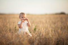 Badinez l'enfant en bas âge sur le champ de blé au coucher du soleil, mode de vie Image libre de droits