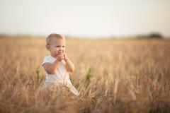 Badinez l'enfant en bas âge sur le champ de blé au coucher du soleil, mode de vie Photo stock