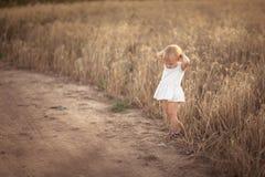 Badinez l'enfant en bas âge sur le champ de blé au coucher du soleil, mode de vie Photos libres de droits