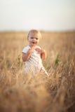 Badinez l'enfant en bas âge sur le champ de blé au coucher du soleil, mode de vie Image stock