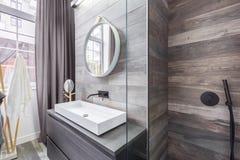 Badkamers met douche en bassin stock afbeelding