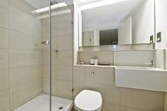Badkamers met douchehoek Royalty-vrije Stock Afbeeldingen