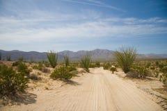 badland borrego沙漠路 免版税库存图片