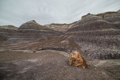 Badland Formations, Petrified Wood, and Bentonite Clay Near Blue Mesa Trail in Petrified Forest National Park, Arizona. Petrified Forest National Park is a Stock Photo