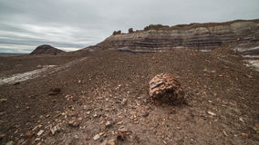 Badland Formations, Petrified Wood, and Bentonite Clay Near Blue Mesa Trail in Petrified Forest National Park, Arizona. Petrified Forest National Park is a Royalty Free Stock Image